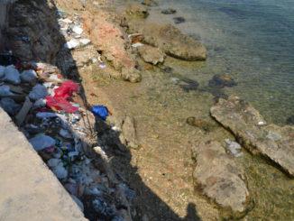 Vermüllter Uferabschnitt nahe Havanna