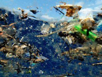 Plastik im Meer